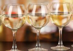 Weinschulen in Deutschland, Weinseminare, Fortbildung für Weinfreunde