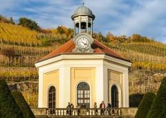Weinevents der Weinregion Sachsen