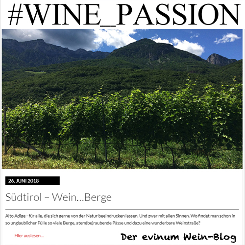 HP evinum Blog WINE_PASSION Teaser