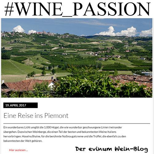 Blog Kachel Piemont