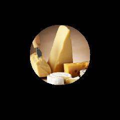 Weinempfehlungen und Rezepte zu Käse