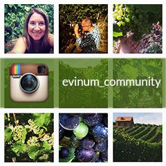 Homepage Social Media Kacheln instagram